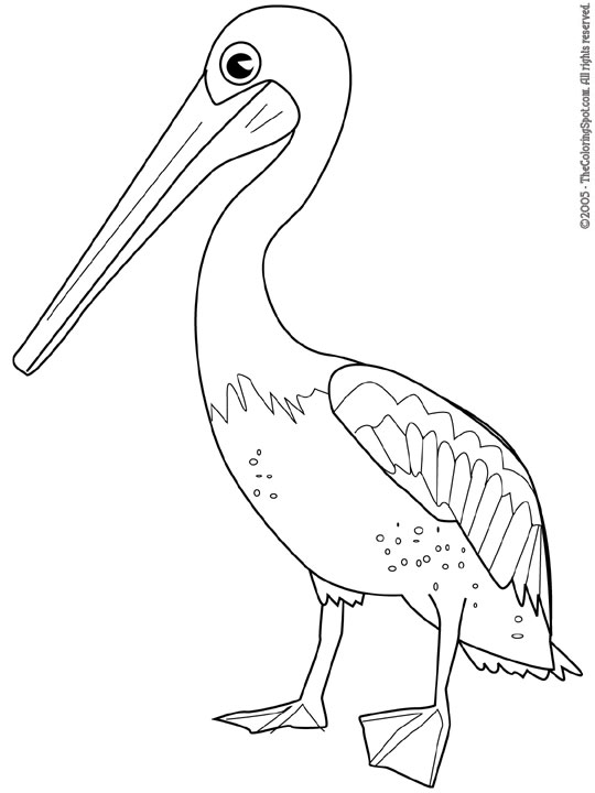 Pelican Audio Stories for Kids Free Coloring Pages from Light