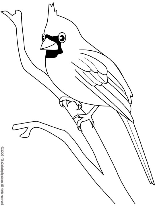 Cardinal 2 Audio Stories for Kids Free Coloring Pages from