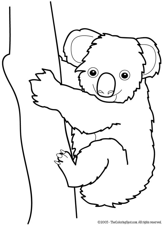 koala audio stories for kids free coloring pages from light up