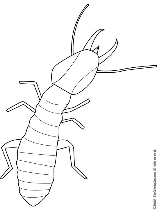 termite coloring page
