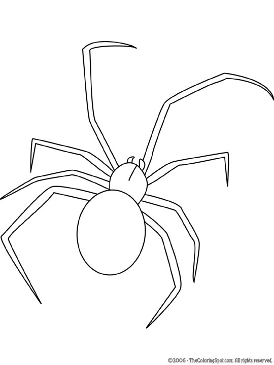 Black Widow Spider Coloring Page | Audio Stories for Kids ...