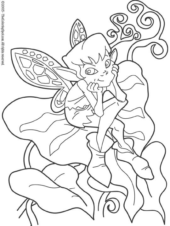 fairy_2